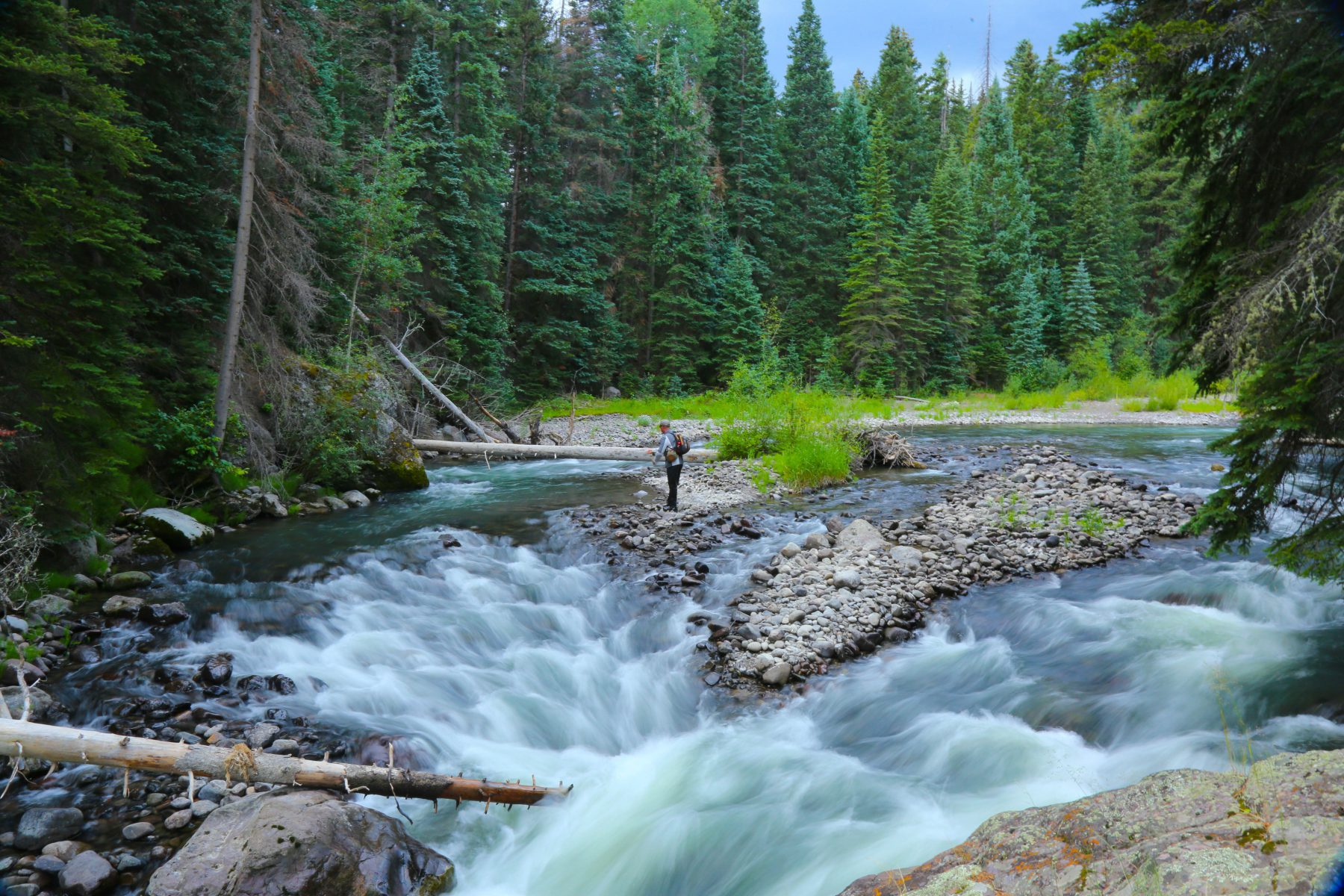 Three Forks of the Cimarron River - Uncompahgre Wilderness