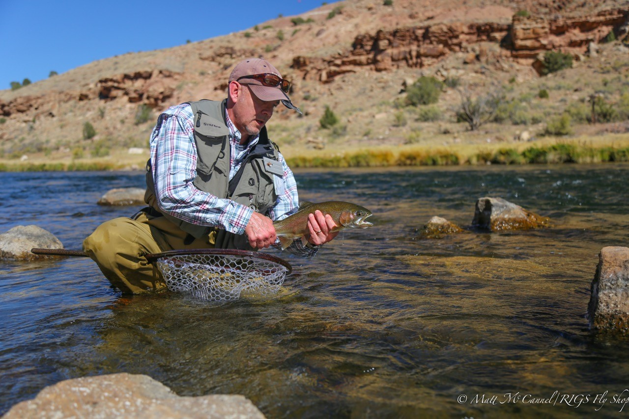 Rigs blog archives rigs adventure co fly shop fly for Gunnison river fly fishing